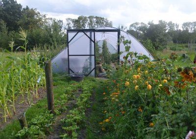 Biodynamische boerderij De Kompenije & Tuinderij Het Midden